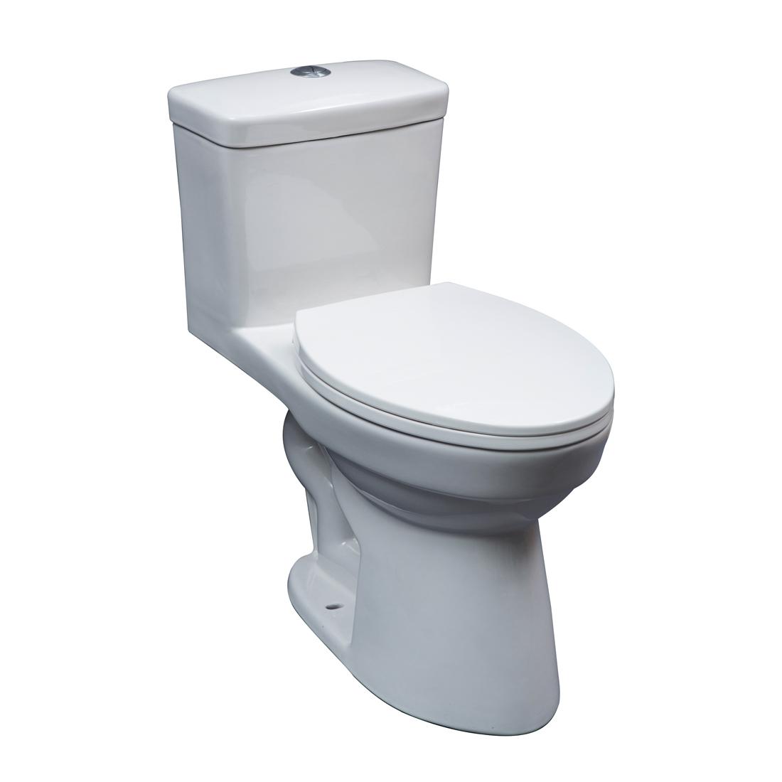 Atlanta Toilet Dolphin Home Decor